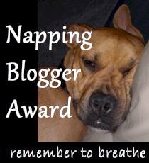 Napping Blogger Award