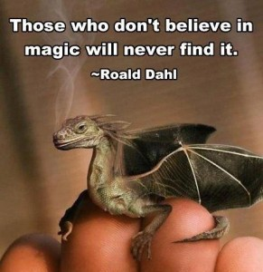 believe-in-magic-dahl