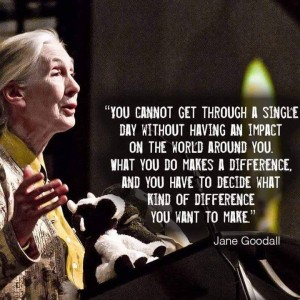 """You cannot get through a single day without having an impact on the world around you. What you do makes a difference, and you have to decide what kind of difference you want to make."" -Jane Goodall"
