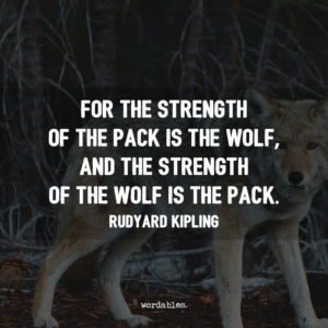 """For the strength of the pack is the wolf, and the strength of the wolf is the pack."" -Rudyard Kipling"